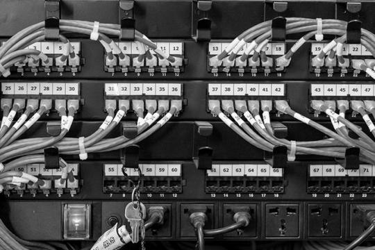 Na zdjęciu switch z kablami w szafie serwerowej